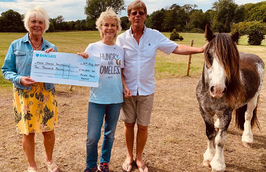 Mane Chance Sanctuary – Presentation