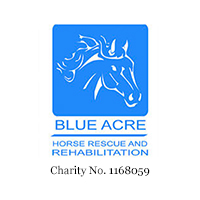Blue Acre Horse Recue & Rehabilitation