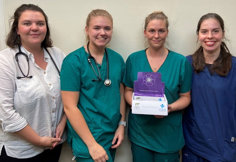 Rase Veterinary Centre raises £,1000 for the Animal Purple Poppy Fund