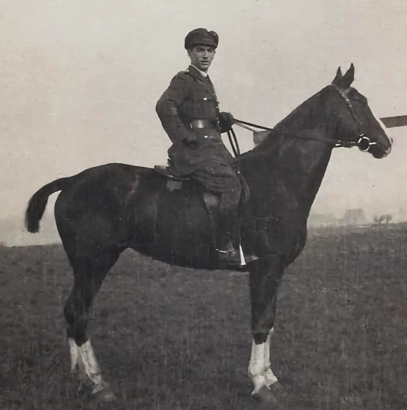 Vic, our Hero Horse No29, saluted in Montrose exhibition